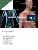 Sistema Respiratorio III