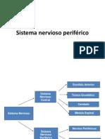 4 1 Sistema Nervioso Periferico Resumen c5 Ppt