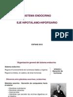 6. Endocrino Reg Hipotalamo Hipofisis