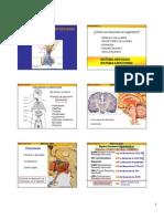 6 hipotalamo hipófisis 2009