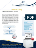 Application Flyer Annexin v Assay HP