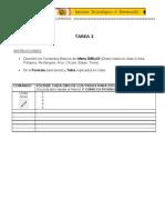 Formato_Tarea_2