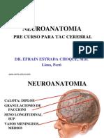 Neuroanatomia Para Interpretrar Tac