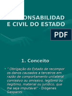 Professor A Márcia - Responsabilidade Civil Do Estado