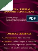 01_-_Corteza_Cerebral_y_Sindromes_Topograficos
