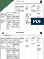 Matriz de Consist en CIA de Willy Pacheco Barbaran