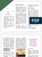 FOLLETO DETERMINANTES (1) (1)