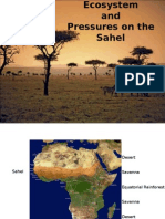 the-savanna-ecosystem-1229011393678230-1