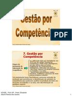 Gestão Competência-Profa.Bete-2011