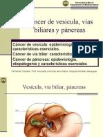 CA Vesicula Vias Biliares y Pancreas