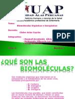Expo Bio