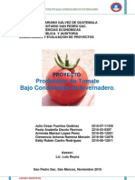 Proyecto Produccion de Tomate Bajo Condiciones de Invernadero