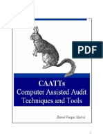 Computer Assisted Audit Techniques Tools