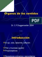 Clase Sentidos Histología