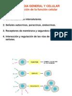 Clase Señales Biología Celular