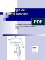 CLASE 10 - Embriología Del Sistema Nervioso
