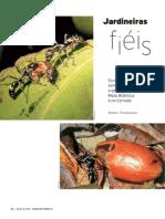Formigas (Artigo)