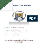 Internship Report Bank Al Habib 1 Doc