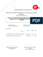 Informe Final Paneton Angel Carhuapoma