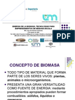 BIOMASA Energia de La Biomasa en Misiones Argentina IMBERT
