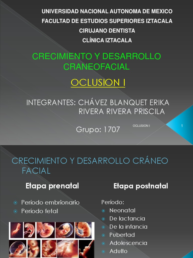 21271136 CrecIMiento y Desarrollo Craneofacial