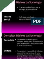 Conceitos - sociologia