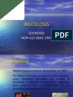 Presentacion de Bruce Los Is Modificada