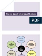 Macro Level Emerging Themes