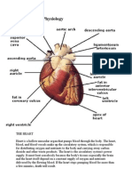 Anatomy and Physiology ASCVD