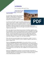 Biocenosis Del Desierto
