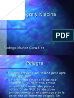 Exposición_Pelagra_Introducción a Bioquímica II