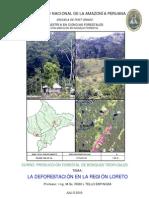 La deforestación en la region Loreto