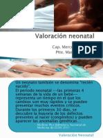 Valoracion Del RN