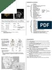 Australopithecus Sediba - Cheatsheet