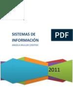 Por qué los objetivos de sistemas de información (1)
