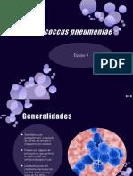 presentacion equipo 4 microbiologia