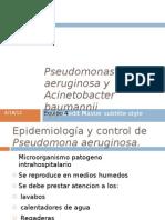 Pseudomonas Aeruginosa y Acinetobacter Baumannii