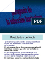 microbiologia 1.5