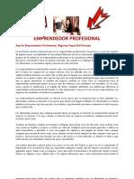 Emprendedor-profesional-3
