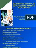 Diagnostico Molecular