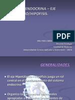 FISIOLOGÍA ENDOCRINA – EJE HIPOTÁLAMO
