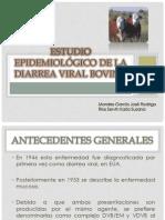 DVB[1]