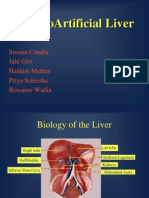The Bio Artificial Liver2