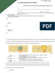 CTSA , Teoria Geo e Heliocentrica, fósseis I