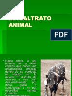El Maltrato Animal