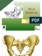 4 Pelvis Obstétrica FPM [Modo de compatibilidad]