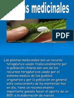 Presentación1 hierbas medicinales