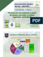 315 Jose Calle Biodiesel de Aceites Residuales