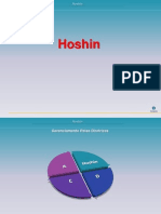 Hoshin