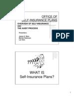 OSIP Audit Power Point